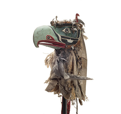 Kulus or down-covered bird, hooked beak of pale green, pale blue-grey patches around eyes, cotton and feather head cover.